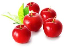 L'acérola le fruit antioxydant venu d'Amérique du sud