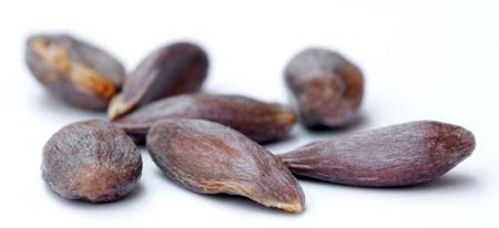 L'huile de jojoba bio antioxydante contre le vieillissement de la peau
