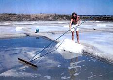 Gilles Hervy producteur de sel naturel à Guérande en Bratagne
