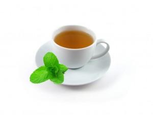 La stevia rebaudiana bio est un excellent édulcorant naturel