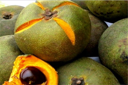 La lucuma le fruit super aliment d'Amérique du sud