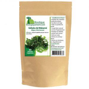 Acheter sur la boutique Biologiquement.com du Wakamé bio un algue pour le traitement naturel du cancer